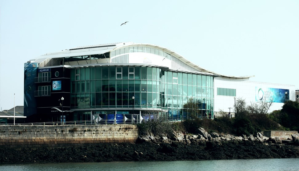The National Marine Aquarium