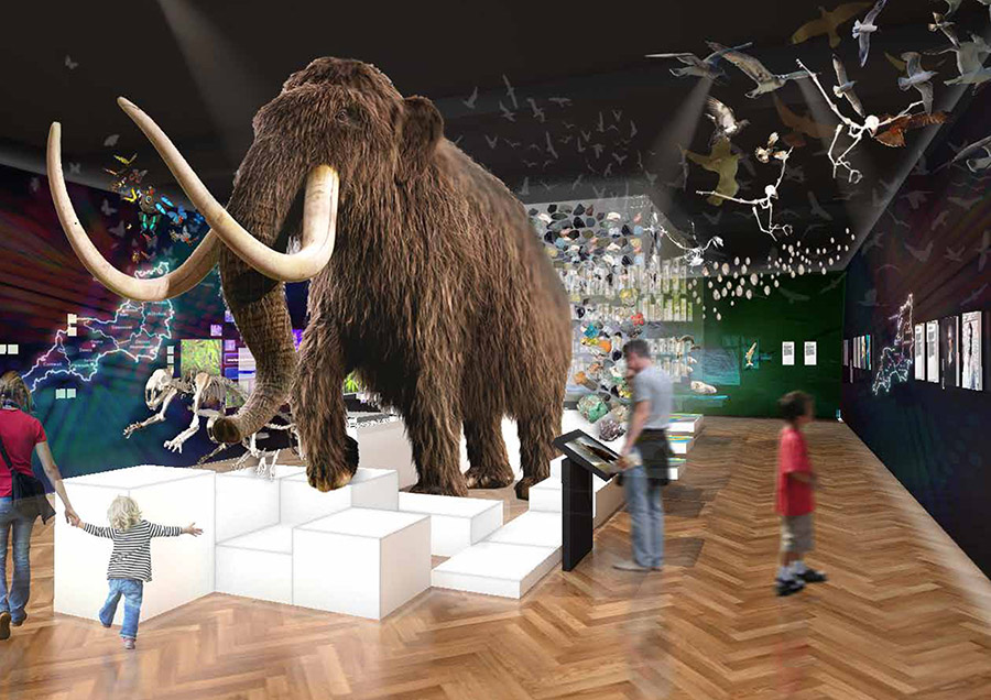 The Box Plymouth mammoth gallery